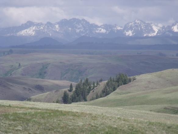 Seven Devils Range from Zumwalt Prairie