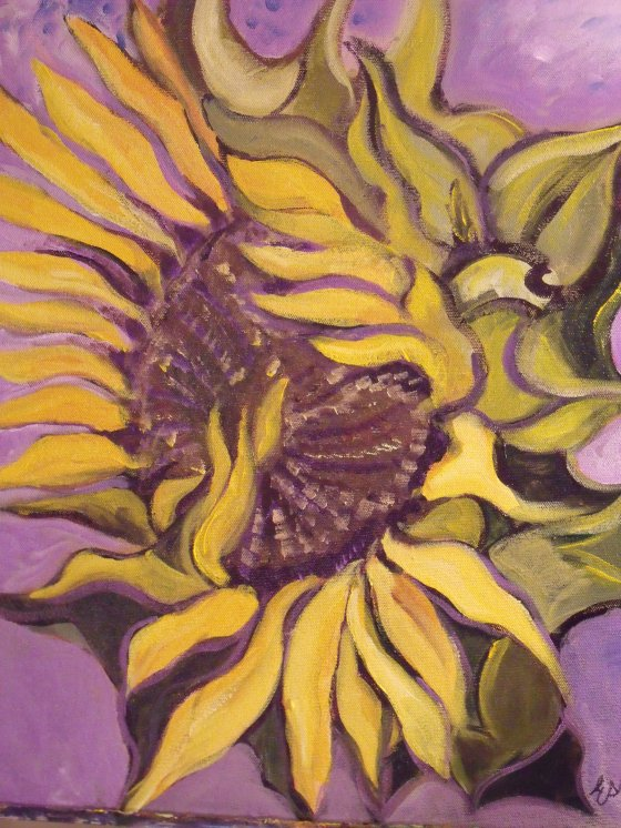 Sunflower Dissolving into Violet 001
