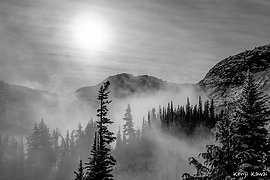 Mountain Mists