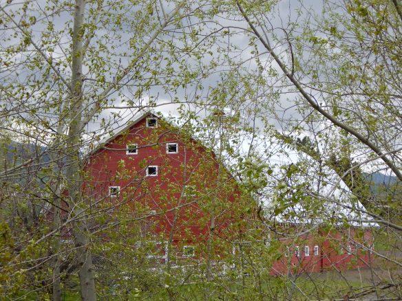 """Red Barn off Russell Creek Road, outside Walla Walla, WA"""
