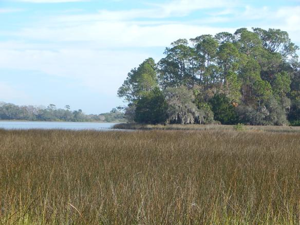 Pellicer Creek and Marshes