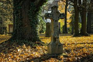 autumn-2182010_960_720
