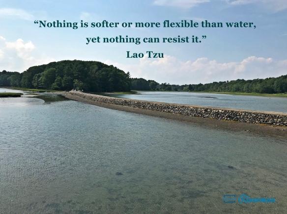 Lao Tzu Water Quote.jpg
