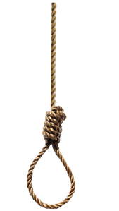 long noose